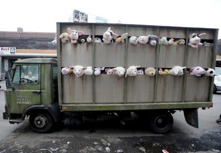 BanksyLambs